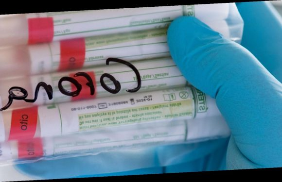 RKI meldet 23.449 Corona-Neuinfektionen in Deutschland
