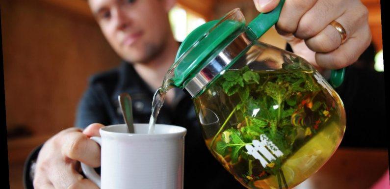 Darum hilft warmer Tee bei heißen Temperaturen besser als eiskalte Cola